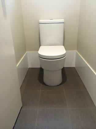 Toilet Ideas by CalState Tiling