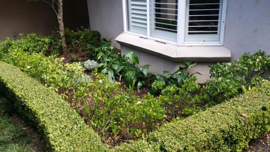 Vegetable Garden Designs by Evoke Landscaping