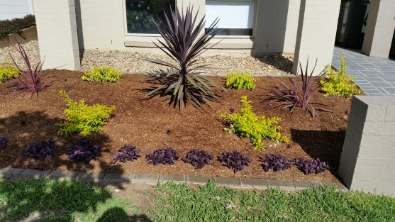 Vegetable Garden Designs by Steady Eddie's Landscaping Pty Ltd