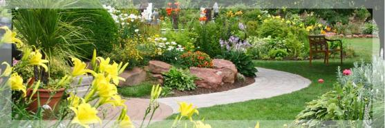 Garden Path Design Ideas by Absolute Green Life Gardening