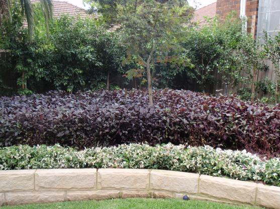 Garden Edging Ideas by Taylor Made Gardens QLD