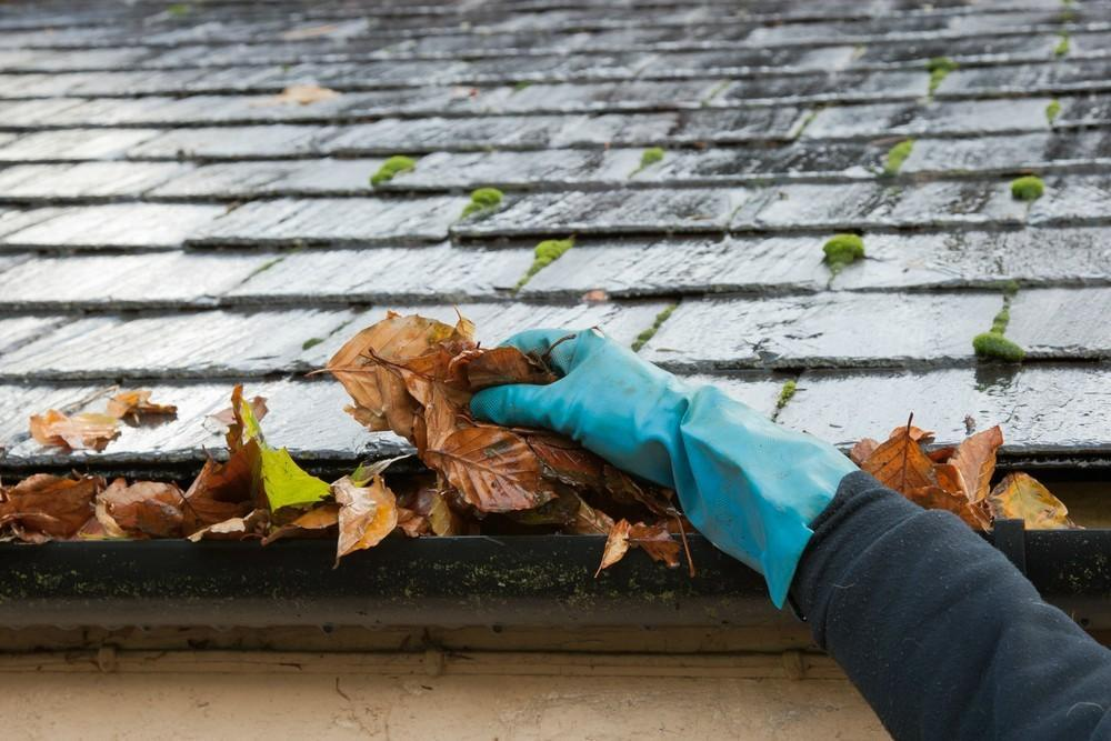 blocked gutters can cause damp issues