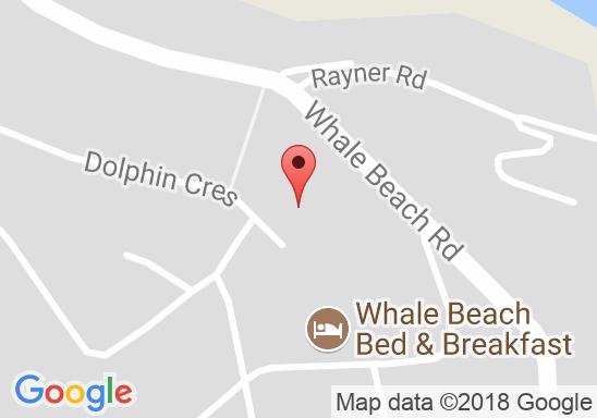 John Fryer Whale Beach