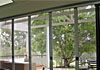 Retractable Fly Screens for Doors & Windows