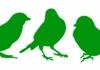 Three Little Birds Landscapes