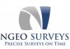 NGEO Surveys
