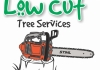 Low Cut Tree Services