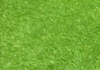 Always Green Synthetic Grass