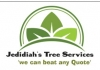 JEDIDIAH'S TREE SERVICES