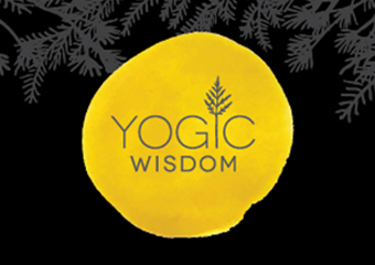 Click for more details about About Yoga Wisdom