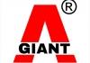 VNdraft.com