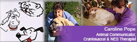 Animal Communicator, Craniosacral & NES Therapist - Animal Communication