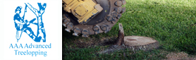 Treelopping & Stump Grinding