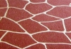 Star Spray Decorative Concrete coatings