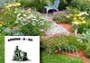 Gardening & Lawn Mowing Services- Bossley Park