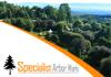 Tree Felling & Arborist Specialists - For A Better Garden & Landscape!