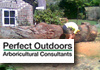 Professional Tree Lopping & Stump Grinding Services.