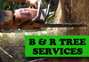 B&R Tree Services - Tree Fellers