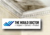 The Mould Doctor
