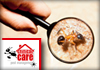 Critical Care Pest Management