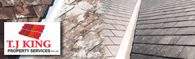 Roofing & Roof Repair Services