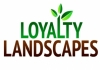 Loyalty Landscapes