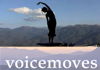 Click for more details about About Voicemoves