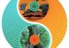 Inner Rhythms Acupuncture
