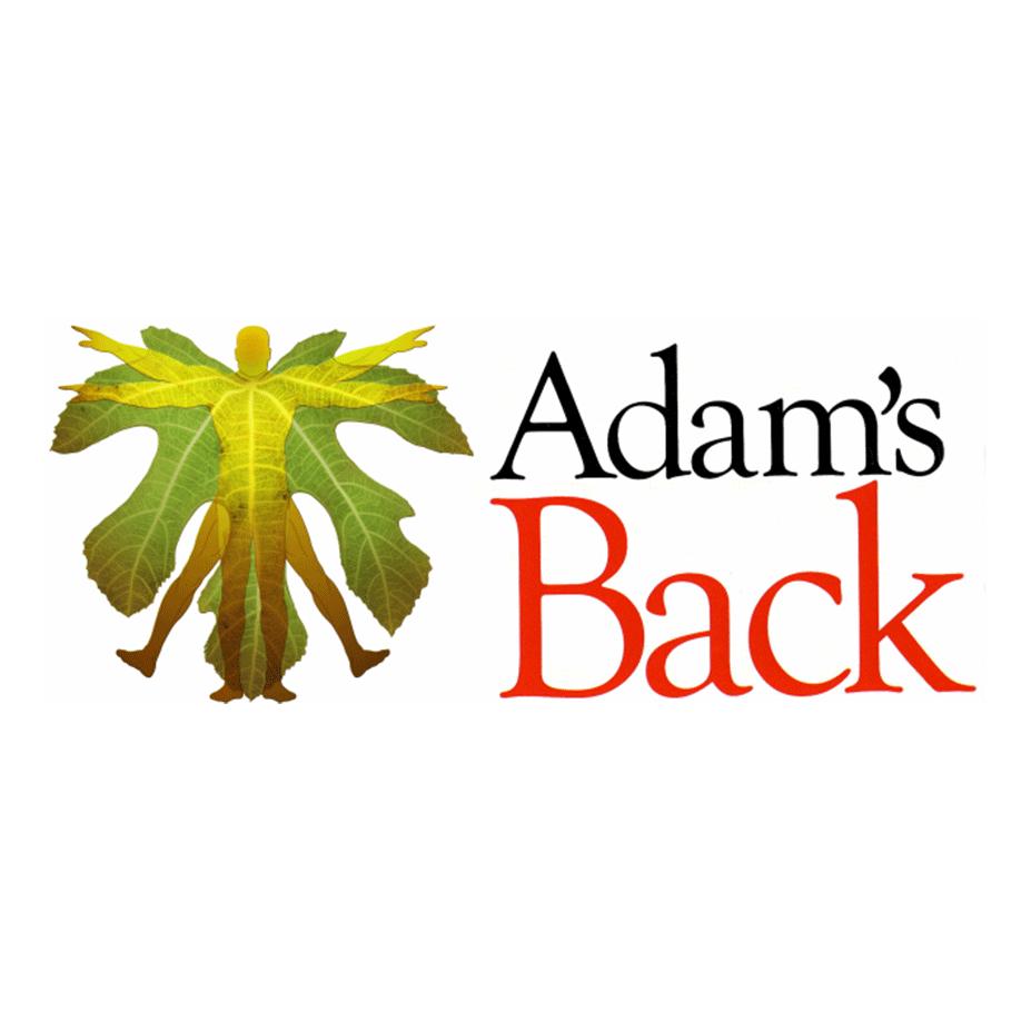 Adam's Back