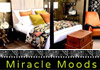 Miracle Moods - Furniture Packages