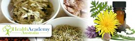 Medicinal Herbs Course