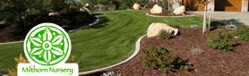 Milthorn Landscapes - Landscaping & Gardening Services