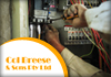 For Your Local Electrician Call Col Breese Electrical