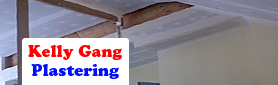 Looking For A Professional Plastering Service?