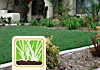 Lawn, Turf & Lighting Services