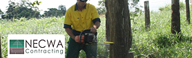 Professional Tree Felling Services In Your Area!
