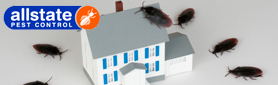 Got Pests In Your Home? We'll Solve Your Problem!