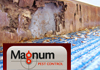 Magnum Pest Control (AUST) Pty Ltd - Termite & Pest Inspections