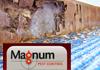 Magnum Pest Control (AUST) Pty Ltd