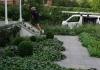 Lisa Ellis Gardens - Garden Maintenance