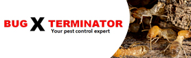 Pest Control Treatments That Suit You!