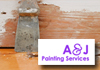 Commercial & Strata Painting Specialist