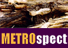 Metrospect Building & Pest Inspections - Pest Inspections