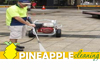 Pineapple Cleaning Services
