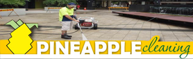 Pineapple Cleaning Services - High Pressure Cleaning