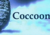Coccoon Renovations & Constructions