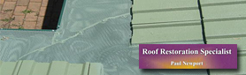 Need Gutter Guards To Protect Your Roof And Drains?