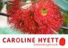 Caroline Hyett Gardens & Design