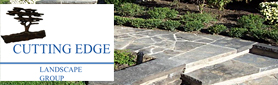 Cutting Edge Landscape Group