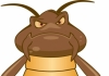 Drop Dead Pest Control Inspections
